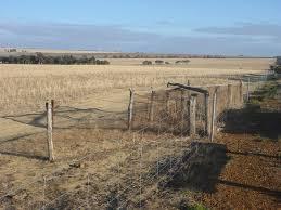 No 1 Rabbit Proof Fence Merredin 2020 All You Need To Know Before You Go With Photos Merredin Australia Tripadvisor
