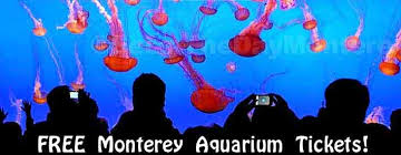 free monterey bay aquarium tickets