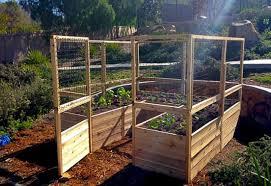 Raised Garden Bed 8 X 8 Deer Fence Kit Bettergreenhouses Com