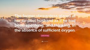 "john irving quote ""the former stewardess glared at her ex pilot"