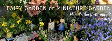fairy gardens wa australia miniature