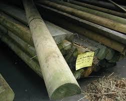 3 6m X 100mm Diameter Treated Wood Machine Half Round Fencing Rails 6 Railings Pickets