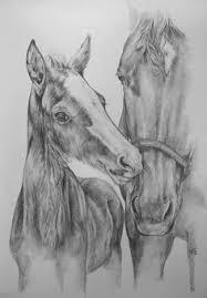 9 Beste Afbeeldingen Van Paard Paard Tekeningen Paarden En