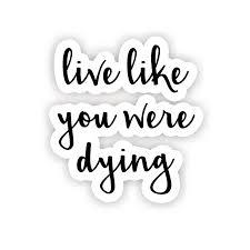 Live Like You Were Dying Inspirational Quote Stickers 2 5 Vinyl Decal Laptop Decor Window Vinyl Decal Sticker Walmart Com Walmart Com