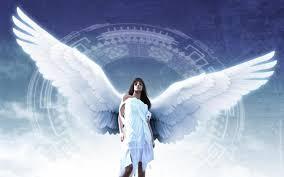 angel wings hd wallpapers desktop