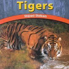 Tigers : Adele Richardson : 9780736811408