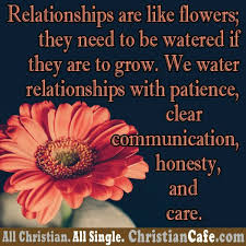relationships are like flowers they need to be watered if they