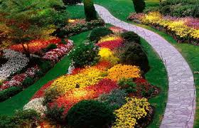 beautiful flower bed designs for sun