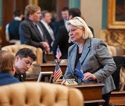 State Sen. Ruth Johnson to hold tele-town hall on coronavirus ...