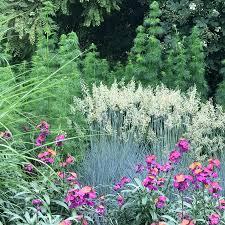 garden festival planner chelsea flower