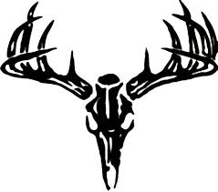 Deer Skull Wall Decal Custom Wall Graphics