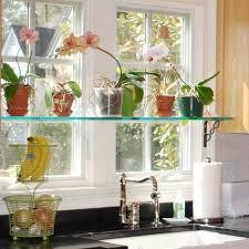 window sill plants shelves