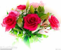 صور ورد متنوع خلفيات ورد وزهور Hd صور ورد جميل احلى صور ورد