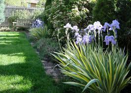 Small Garden Border Fence Garden Design Ideas
