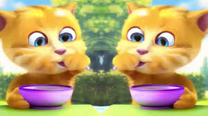 Rửa mặt như mèo - Meo Meo Meo - Nhạc thiếu nhi vui nhộn nhất - YouTube
