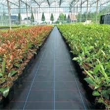 pp woven ground cover garden control