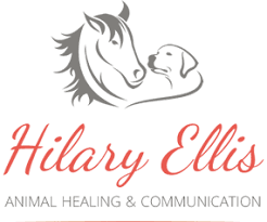 Home - Hilary Ellis Animal Healing & Communication