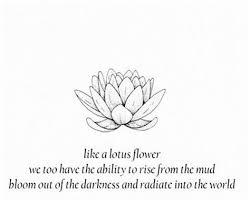 like a lotus flower quotes