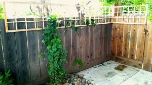 Diy Lattice Fence Topper Similar 2 X8 Designs Sell For 35 Only 5 To Build Let Your Vines Frolic Grow Backyard Fences Fence Design Modern Fence