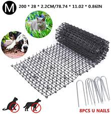 Amazon Com Bird Spikes Fence Dog Cat Scat Mat Sofa Furniture Protecter Cat Scat Spike Mat Cat Repellent Mat Fencing Pet Supplies