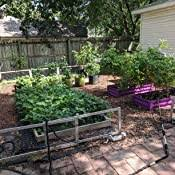 Amazon Com Greenes Fence 2 Critter Guard Cedar Garden Fence 4 Pack 23 5 Garden Outdoor