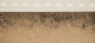 what s that funky new carpet smell and
