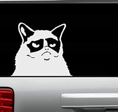 Amazon Com Grumpy Cat Wall Decal Or Window Decal 8 X 10 Everything Else