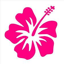 Hibiscus Vinyl Decal Hawaiian Aloha Flower Car Window Laptop 3 Sticke Kandy Vinyl Shop