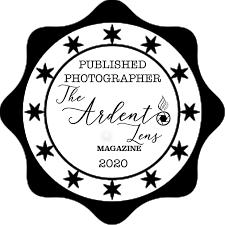 FAQS — Abigail Brier Photography
