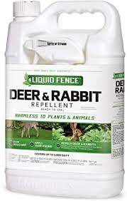 Amazon Com Liquid Fence Deer Rabbit Repellent Ready To Use 1 Gallon Garden Outdoor
