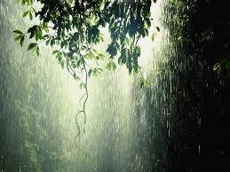 beautiful rainy day es esgram