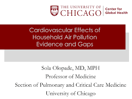 Cardiovascular Effects of Household Air Pollution Evidence and Gaps Sola  Olopade, MD, MPH Professor of Medicine Section of Pulmo