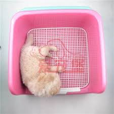 Indoor Dog Fence Buy Indoor Dog Fence Online At Low Prices Club Factory