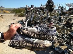 Mojave Desert Heart Trek Usa