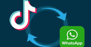 TikTok's new feature lets you share videos with WhatsApp contacts