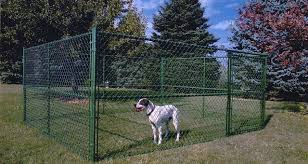 Chain Link Dog Fence Offers A Safety Comfortable Place For Your Pet Dog