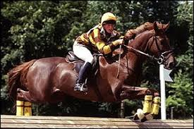 BBC SPORT | EQUESTRIAN | Eventing world opts for safety
