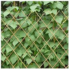 Zengai Garden Fence Trellis Fence Bamboo Fence Fence Climbing Vine Stretch Outdoor Patio Farm Guardrail Bamboo Pull The Net Rope Sold Separately Size Network100x150cm Amazon Co Uk Garden Outdoors