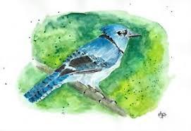 Blue jay, blue bird,ORIGINAL Watercolor art painting by Adriana Holmes |  eBay
