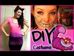 styloween diy cheshire cat costume
