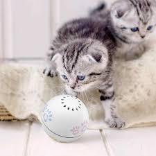 Xiaomi Youpin Petoneer Thú Cưng Đồ Chơi Cho Mèo Thông Minh Đồ ChơI ...