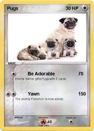 pokemon pugs 38