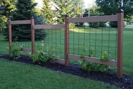 Our Garden Fences And Grape Trellis Full Stack Gardener In 2020 Garden Trellis Fence Grape Trellis Backyard Trellis