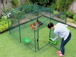 Omlet Poultry Walk In Chicken Run Enclosure For Hens Appletons