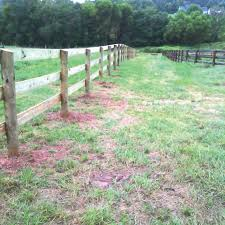 Fencing For The Dressage Facility Dressage Today