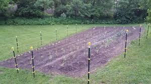 got our garden in and electric fence up