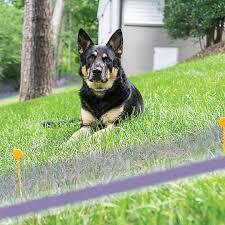 Free Spirit In Ground Fence Dog Fence Systems Petsmart