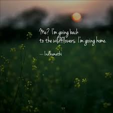 me i m going back to t quotes writings by indhumathi