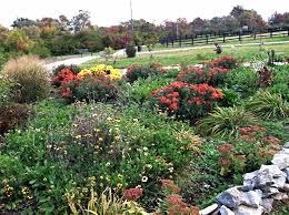 lexington women s garden