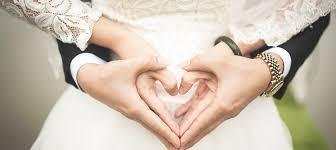 david s bridal credit card review lendedu
